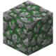 Mossy Cobblestone JE2 BE1.png