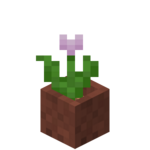 Potted Pink Tulip.png