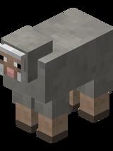 Light Gray Sheep.png
