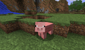 Pig facing player.png