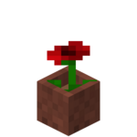 Potted Poppy.png