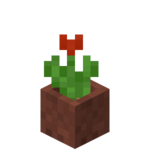 Potted Red Tulip.png