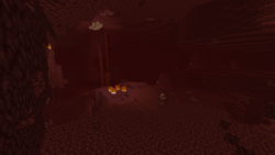 Nether wastes.png