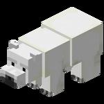 Baby Polar Bear.png