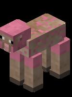 Sheared Pink Sheep.png