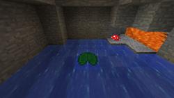 Underground lilypad.png