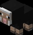 Baby Black Sheep Revision 1.png