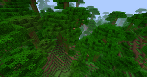 Jungle 12w03a.png
