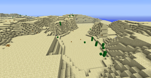 een bergachtige woestijn met enkele cactussen
