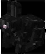 Zwart konijn.png