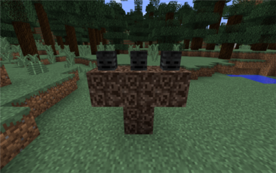 Wither konstrukcja.png