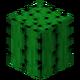 Kaktus przed TextureUpdate.png