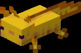 Złoty aksolotl.png
