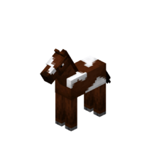 Brown Baby Horse with White Field.png