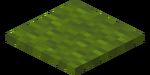 Zielony dywan.png
