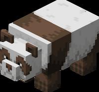 Brązowa panda.png