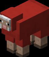 Owca czerwona.png