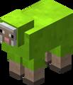 Owca limonkowa przed 1.12.png
