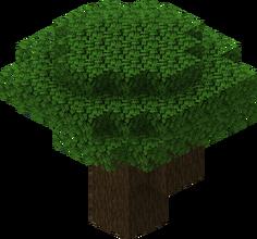 Ciemno dębowe drzewo.png