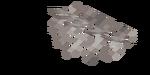 Martwy ścienny wachlarz koralowca rogatego.png