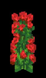 Krzak róży.png