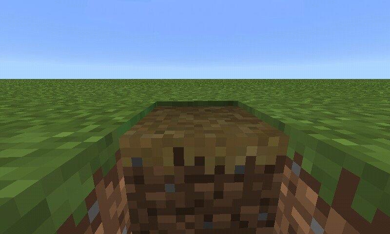 Plik:Porównanie ścieżki i bloków trawy.jpg