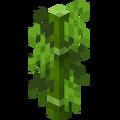 Bambus.png
