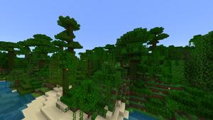 JungleBiome2.png