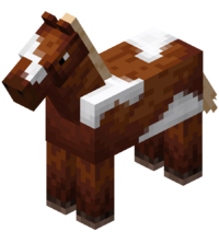 Chestnut Horse with White Field.png
