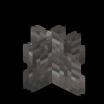 Martwy koralowiec rurkowaty.png