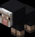 Owca mała czarna.png