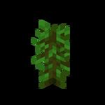 Tropikalna sadzonka.png