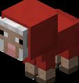 Owca mała czerwona.png