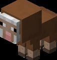 Owca mała brązowa.png