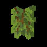 Jaskiniowe pnącza (koniec).png