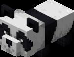 Ленивый детеныш панды.png