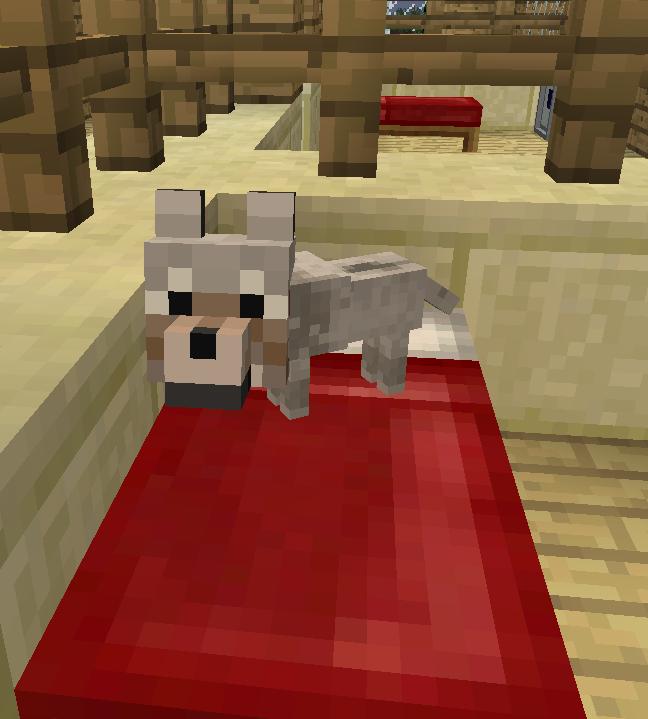 собачьи таланты вики майнкрафт