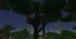 Twilght Forest Canopy Tree.png