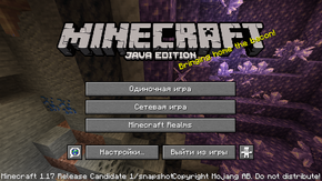 Java Edition 1.17-rc1.png