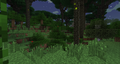 Deep Twilight Forest.png