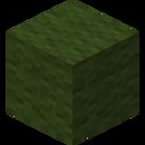 Зелёная шерсть JE2 BE2.png