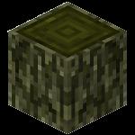 Древесина (ива) (TerraFirmaCraft).png