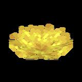 Роговый веерный коралл.png