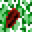 64px-Cacao (Fruit).png