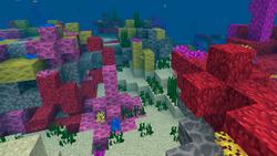 Коралловый-риф.png