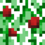 64px-Red Apple (Fruit).png