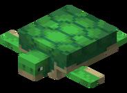 Черепаха.png