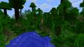 Первое изображение джунглей.png