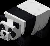 Ленивая панда.png
