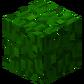 Джунглевая листва (до Texture Update).png